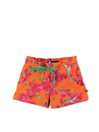 """Wild Shorts """"Siry"""" in Orange/ Pink"""