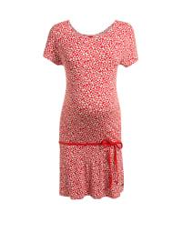ESPRIT Kleid in Rot/ Weiß