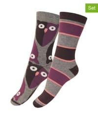 Melton 2er-Set: Socken in Grau/ Lila/ Schwarz