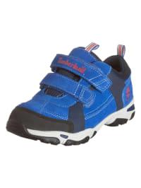 Timberland Leder-Sneakers in Blau/ Schwarz