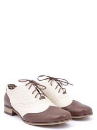 Zapato Leder-Schnürschuhe in Creme/ Braun